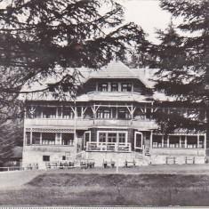 Bnk cp Campulung Moldovenesc - Cabana Deia - circulata - Carte Postala Bucovina dupa 1918, Printata