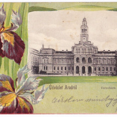 Arad  primaria carte postala clasica circulata in 1901