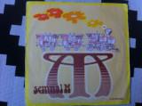 SEMNAL M Trenul cursa de persoane Apahida Cluj album disc vinyl lp muzica rock, VINIL, electrecord
