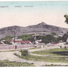 Siria Vilagos j.Arad carte postala animata circulata 1909 - Carte Postala Crisana 1904-1918, Printata