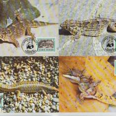 Cabo Verde 1986 - gecko, serie maxima