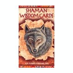 Shaman Wisdom Cards -- Tarot Cards: 65-Card Deck - Carte ezoterism