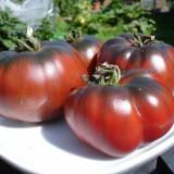 Seminte de rosii Black Krim- 10 seminte pt semanat - Seminte rosii