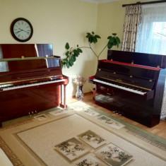 Pianina Altele moderna Steinbach