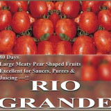 Seminte rare de rosii Rio Grande - 5 seminte pt semanat - Seminte rosii