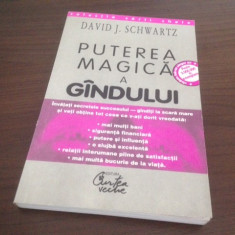 DAVID J. SCHWARTZ, PUTEREA MAGICA A GANDULUI - Carte afaceri
