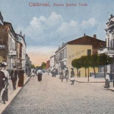 CALARASI, STRADA STIRBEI VODA - Carte Postala Oltenia 1904-1918, Necirculata, Printata