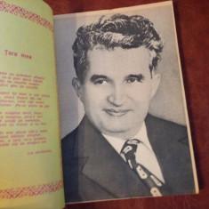 Almanah Pentru patrie anul 1989 / 240 pagini !