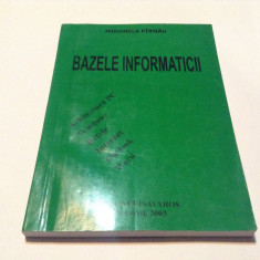 Bazele Informaticii Mironela Pirnau,RM3