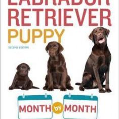Your Labrador Retriever Puppy Month by Month - Carte in engleza