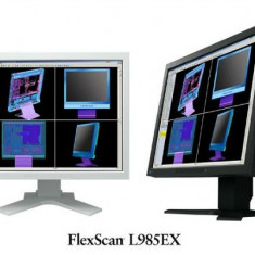 MONITOR EIZO, model: FLEXSCAN L985 EX, 21inch, WIDE, SH, display zgariat, fara picior - Monitor LCD