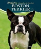 Boston Terrier [With DVD]