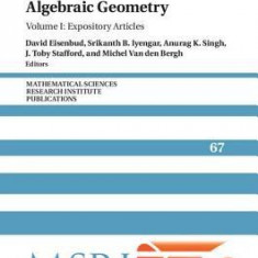 Commutative Algebra and Noncommutative Algebraic Geometry: Volume 1, Expository Articles - Carte in engleza