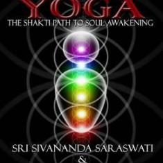 Kundalini Yoga: The Shakti Path to Soul Awakening - Carte in engleza
