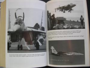 Avioane  de  vanatoare, de lupta. Lupta aeriana in era moderna.