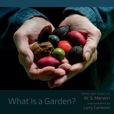 What Is a Garden? foto mare