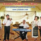 Muzica la nunta ta / Formatie evenimente, Alte tipuri suport muzica, arista