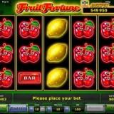 Franciza pacanele sloturi jocuri de noroc si pariuri sportive