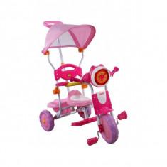 Tricicleta ARTI 260C - Roz - Tricicleta copii