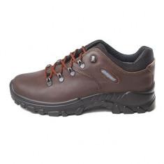 Pantofi barbatesti din piele cu membrana Gritex (GR10309D69GE) - Pantof barbat Grisport, Marime: 40, 41, 42, 43, 44, 45, Culoare: Maro