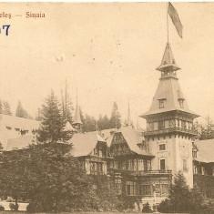 Sinaia - Castelul Peles - lot 12 carti postale - interbelice - Carte Postala Muntenia dupa 1918, Necirculata, Fotografie