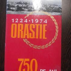 ORASTIE * 1224-1974 * 750 de Ani - Ion Iliescu - Deva, 1974, 383 p. - Istorie