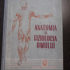 ANATOMIA SI FIZIOLOGIA OMULUI - I.C. Petricu, I.C. Voiculescu - Medicala, 1959