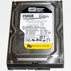 HDD 3.5inch PATA 250GB 7200 rpm Western Digital Enterprise wd2503abyx - Hard Disk