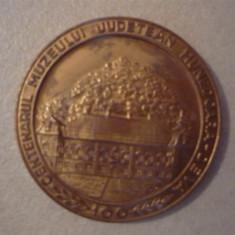 Placheta- Centenarul Muzeului Judetean Hunedoara - Deva - 1982 - Medalii Romania