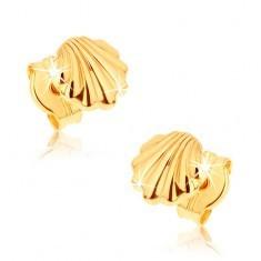 Cercei din aur 9K - scoici lucioase - Cercei aur