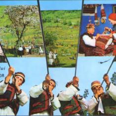 Romania - CP circulata 1977 - Tara Oasului -Sambra oilor