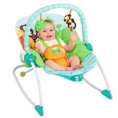 Balansoar 3 in 1 Baby to Big Kid - Balansoar interior Bright Starts