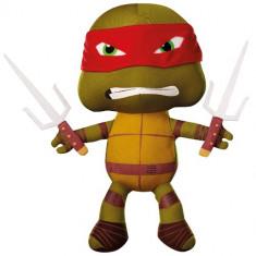 Amic Raphael Testoasele Ninja - Carte hardware