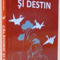 CALATORIE SI DESTIN, POVESTEA LUCIANEI de LUMINITA SAMBOTIN, 2017 - Roman