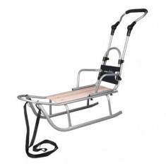 Sanie Baby Dreams Rider Plus