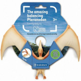Incredibilul Pteranodon - Jocuri Logica si inteligenta
