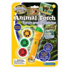 Proiector Animale Salbatice - Jocuri Logica si inteligenta
