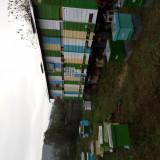 PAvilion Apicol / Remorca fara albine