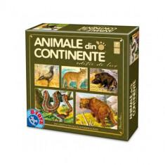 Joc Animale din Continente Editie de Lux - Jocuri Logica si inteligenta D-Toys