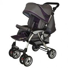 Carucior Spring Violet - Carucior copii 2 in 1 DHS Baby