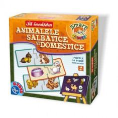 Sa Invatam Animale Salbatice si Domestice - Jocuri arta si creatie D-Toys