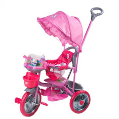 Tricicleta Merry Ride Roz - Tricicleta copii DHS Baby