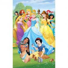 Tapet pentru Copii Disney Princess