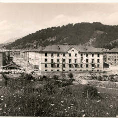 Valea Jiului - Locuinte muncitoresti in curs de constructie - Fotografie, Alb-Negru, Cladiri, Romania de la 1950