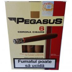 Tigari foi pegasus 55 gr - Tutun Pentru tigari de foi