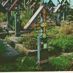 CPI (B8201) CARTE POST - SAPANTA, CIMITIRUL VESEL, JUD. MARAMURES - Carte Postala Maramures dupa 1918, Necirculata, Fotografie
