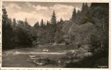 Tusnad  - lot 2 carti postale - interbelice, Circulata, Fotografie, Romania 1900 - 1950