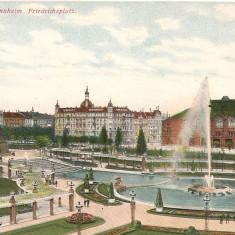 Germania - Mannheim - lot 5 carti postale vechi, Necirculata, Printata, Europa