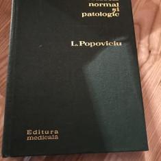 L. POPOVICIU--SOMNUL NORMAL SI PATOLOGIC - 1972 `1 - Carte Psihiatrie