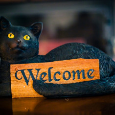 Statuetă pisică cu semn Bine ați venit - Sculptura